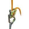 Climbing Technology Click-Up Belay Kit green